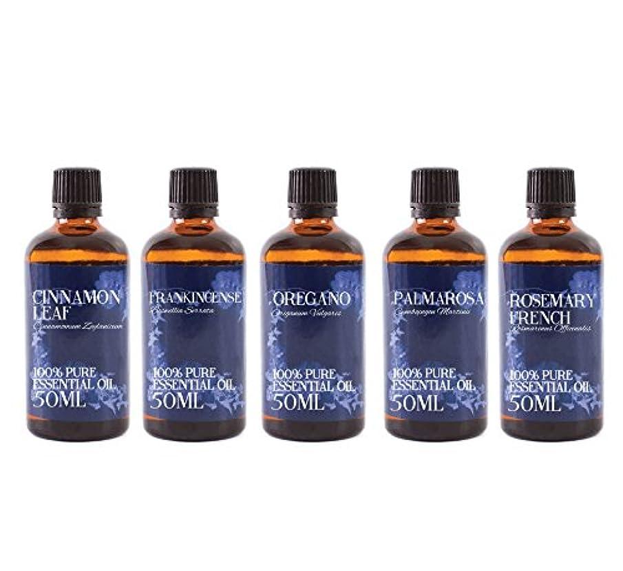 ライム傀儡別れるMystic Moments | Gift Starter Pack of 5 x 50ml Yang Essential Oils