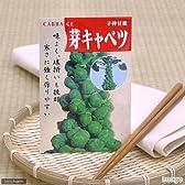 【種子】子持キャベツ/芽キャベツ [2236]
