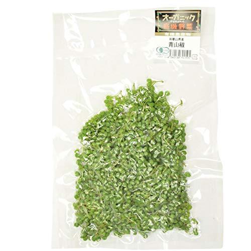 【青山椒 (生)100g×2】和歌山県産無農薬栽培!冷凍品