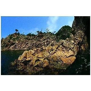 鳥取県岩美郡岩美町の日本海 浦富海岸リアス式海岸のポストカード絵葉書はがきハガキ葉書postcard