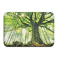 Tree Indoor/Kitchen/Bathroom Mats Non Slip Print Door Mats 23.6 x 15.7 Inches
