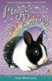 Magic Bunny: Dancing Days (English Edition)