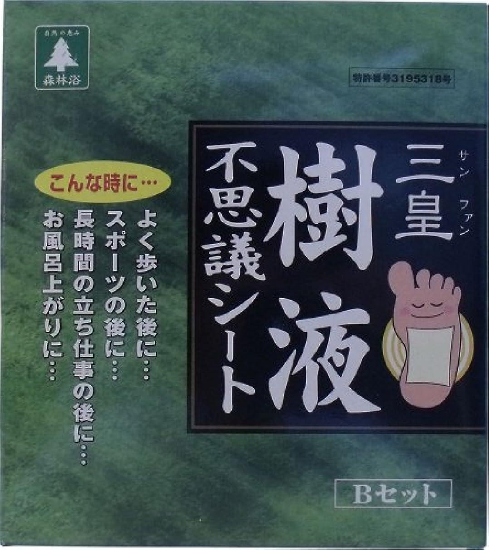 三皇 樹液不思議シート Bセット 24枚(48駒)入 【2個セット】