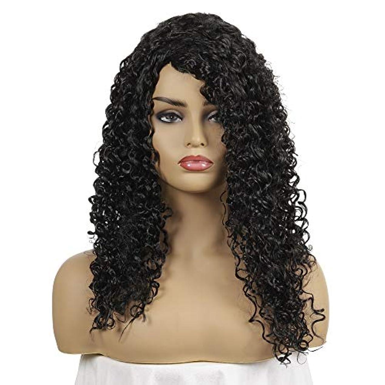 リットルキルトポール黒人女性カーリーブラジルのバージン毛グルーレス女性耐熱ファイバー人工毛人毛かつらのためのロングルーズカーリーグルーレスウィッグ (Color : 黒)
