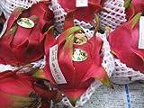 Oishiina Shop 輸入 ドラゴンフルーツ 1ケース 6Kg前後 12個前後