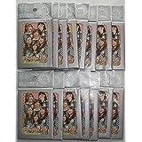 AKB48 コレクションシール 15パック 75枚 ステッカー