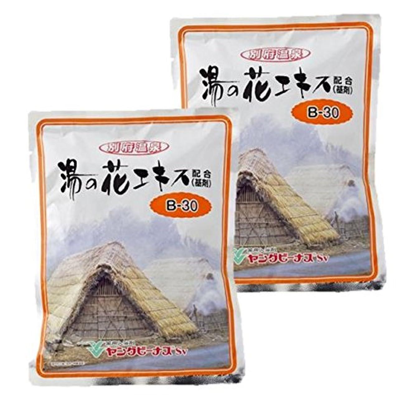 ブラザー好きである雑種別府温泉 ヤングビーナスSv(エスブイ) B-30 詰替 2700g 2個セット