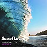 HONEY meets ISLAND CAFE -sea of Love 6- Collaboration with BAYFLOW