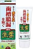 生葉(しょうよう) 歯槽膿漏を防ぐ 薬用ハミガキ ハーブミント味 100g