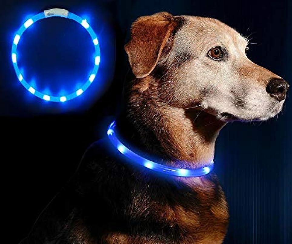 密修道院可塑性LED光る首輪, Darhoo 首輪 犬 猫 光る LED おしゃれ ハーネス ライト ペット 夜間 安全性 夜道 散歩 リード USB充電 防水 小型犬 中型犬 大型犬に対応 - ブルー