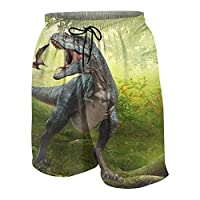 Jurassic-park-dinosaurs 男の子、女の子、 サーフショーツ 青少年 ビーチパンツ 水着 海水パンツ パンツ パンティー 中性の子供。水陸両用 夏場 ホーム 速乾性 スポーツ パンツ 両面印刷 5パンツ