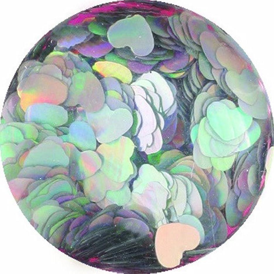 霧深い中央競争ビューティーネイラー ネイル用パウダー 黒崎えり子 ジュエリーコレクション ホロゴールドスパークルスター