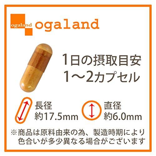お徳用納豆キナーゼ (90カプセル/約3ヶ月分)