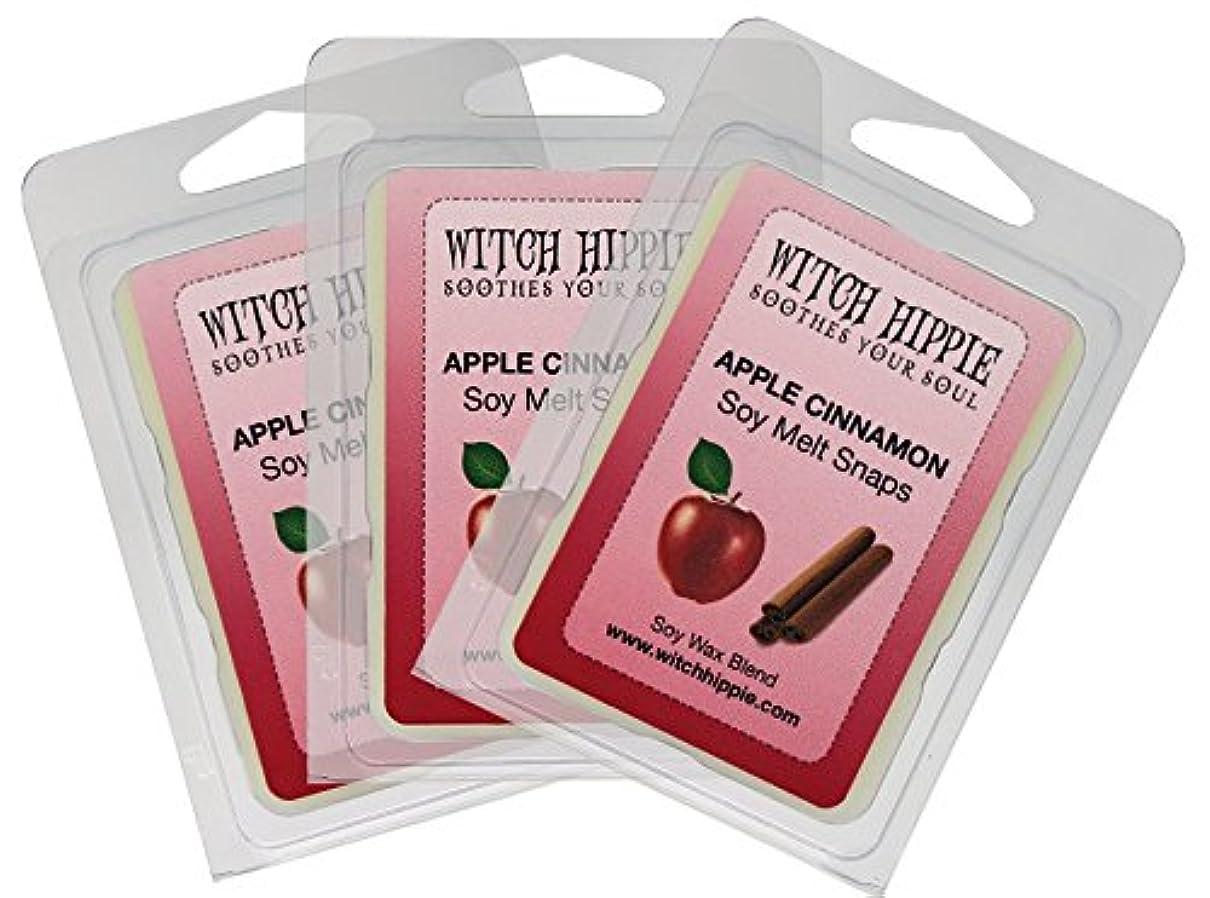 四分円浸す凍結Apple Cinnamon Scented Wickless Candle Tarts、3パック、18自然大豆ワックスキューブby魔女ヒッピー