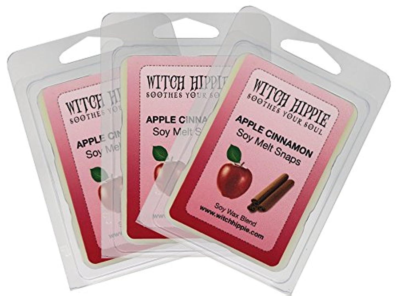転倒モジュール赤道アップルシナモンの香り付き芯なしキャンドルタルト 3パック 天然ソイワックスキューブ18個 フレッシュなシナモンスティックのパウダーを散りばめた赤いジューシーなマッキントッシュリンゴの香り
