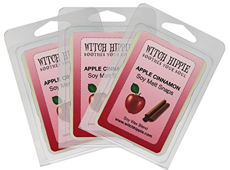 プライム回復小学生アップルシナモンの香り付き芯なしキャンドルタルト 3パック 天然ソイワックスキューブ18個 フレッシュなシナモンスティックのパウダーを散りばめた赤いジューシーなマッキントッシュリンゴの香り