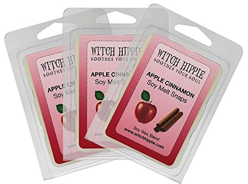 ショット人差し指永久にアップルシナモンの香り付き芯なしキャンドルタルト 3パック 天然ソイワックスキューブ18個 フレッシュなシナモンスティックのパウダーを散りばめた赤いジューシーなマッキントッシュリンゴの香り