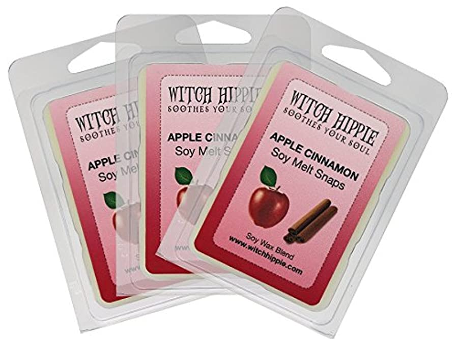 後方同一の略すアップルシナモンの香り付き芯なしキャンドルタルト 3パック 天然ソイワックスキューブ18個 フレッシュなシナモンスティックのパウダーを散りばめた赤いジューシーなマッキントッシュリンゴの香り