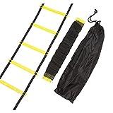 Minidiva長さ22'、9ラング レーニングラダー+キャリングバッグ(黄)