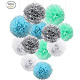 Blue White Mint Silver Tissue Paper Pom Poms Decorations-12 pcs of 8,26cm -Paper Flowers,balls for Wedding Party Baby Shower Decor/Birthday Celebration (Mint,White,Baby Blue,Silver)