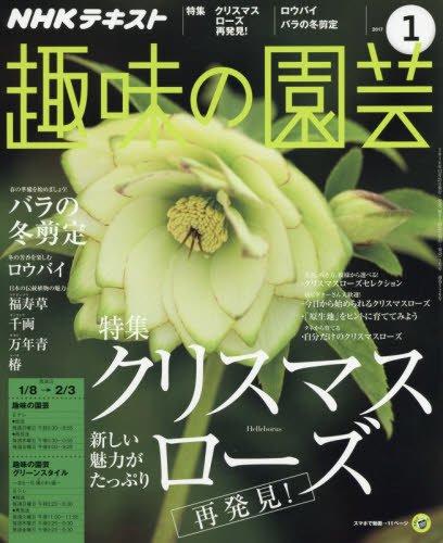 NHK趣味の園芸 2017年1月号 [雑誌] (NHKテキスト)の詳細を見る