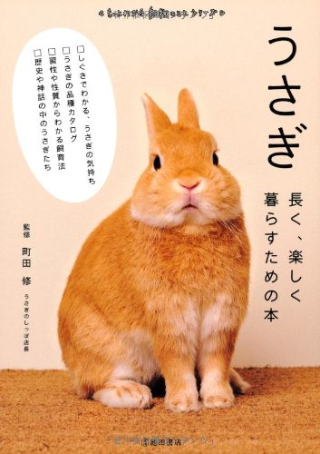 うさぎ-長く、楽しく暮らすための本 (池田書店 もっとわかる動物のことシリーズ)の詳細を見る