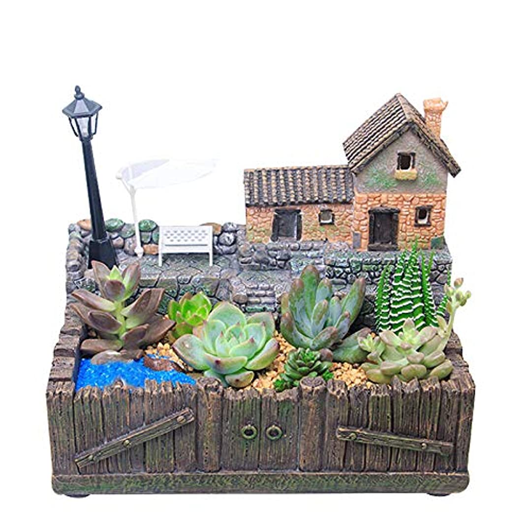 哲学的王朝飛行機DOMO DIYデスクトップ盆栽 多肉植物の植木鉢 植物の装飾 リビングルーム 机 誕生日プレゼント