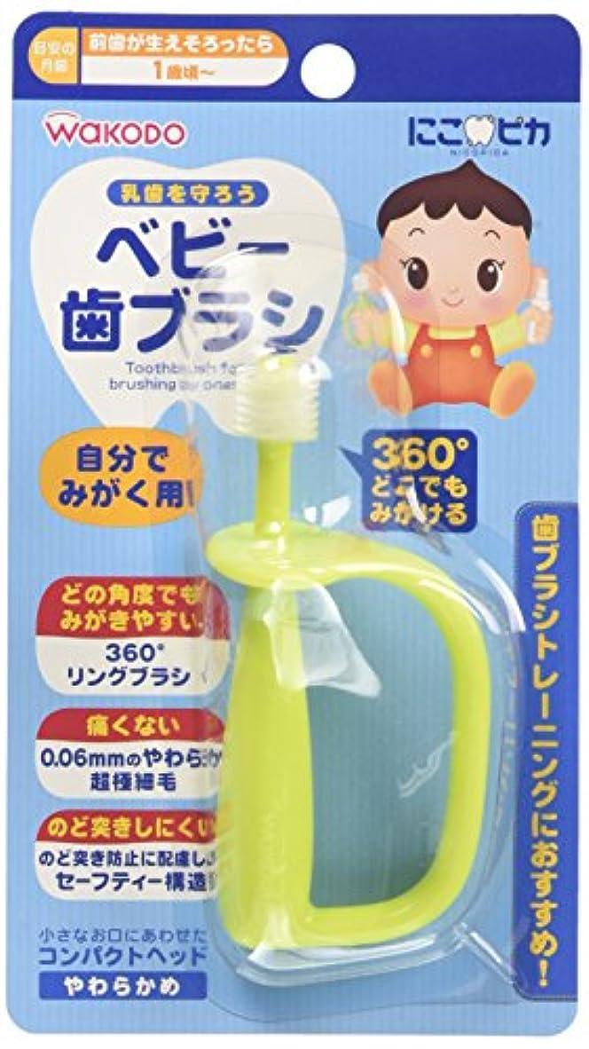 変化吸収剤チャーター和光堂 にこピカ ベビー歯ブラシ 自分でみがく用 BH5