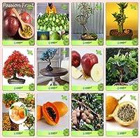 SEED盆栽種子:盆栽適切な種子コンボパッションフルーツ - バイオレット、タイグアバ、ユーカリ、BOO Gulmohar、ジャカランダ,イチジクReligiosa、OrangSEEDシード(パケットあたり10)