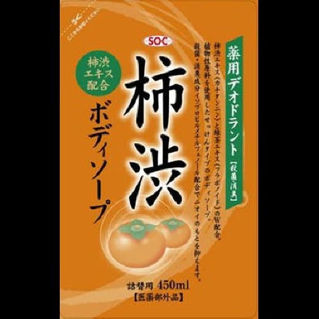 大人エレメンタルカメSOC 薬用柿渋ボディソープ 詰替 450ml ×2セット