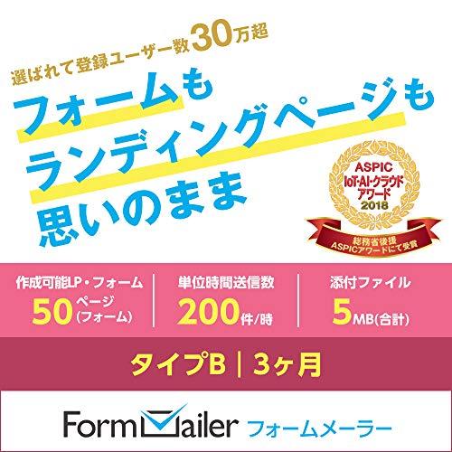 フォームメーラー Business タイプB【LP(フォーム...