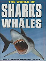 World of Sharks and Whales