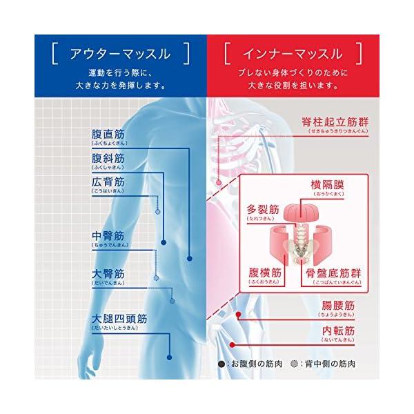 MTG 体幹トレーニングギア TAIKAN S...の紹介画像5