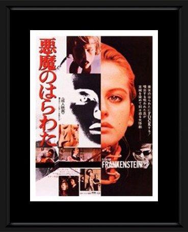 Flesh For Frankenstein - Horror Movie Framed Mini Poster - 48x38cm Vinmag