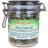 Meowijuana 芽瓶 - 大きな瓶 L サイズ