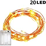 TERSELY Fairy Lights AA Battery Operated, 2M/6.6ft/20 LED String Lights, Waterproof, Indoor Fairy String Lights for Christmas Tree Wedding,Party,Garden Spring Decoration (Warm White)
