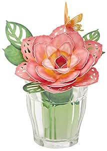 Amazon.co.jp : アルファックス TioTio(R) 潤いペーパーモイスチャー ローズピンク 425304 : ホーム&キッチン