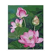 蓮池蓮根油絵大人手描きDIYデジタル油絵初心者ホームデコレーションデジタルツールキット塗装画像量40x50cm