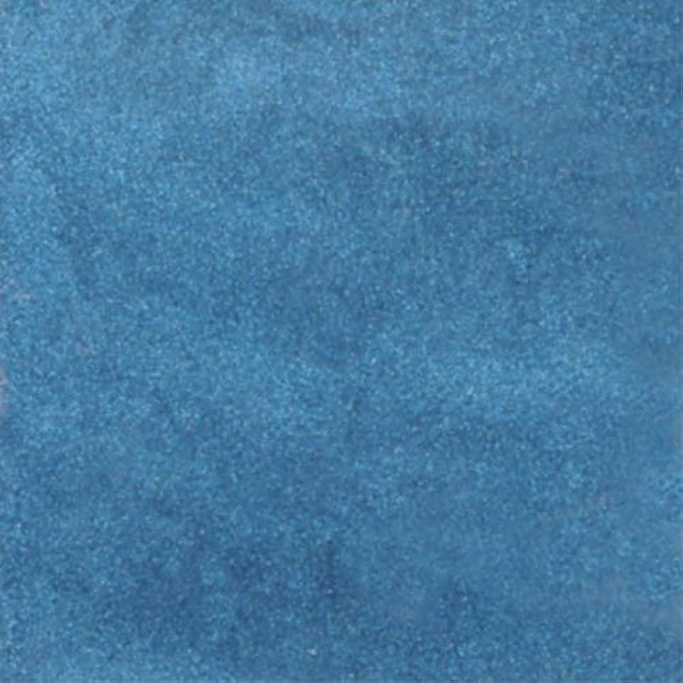 にんじんバイソン天ピカエース ネイル用パウダー ピカエース シャインパウダー #813 藍色 0.25g アート材