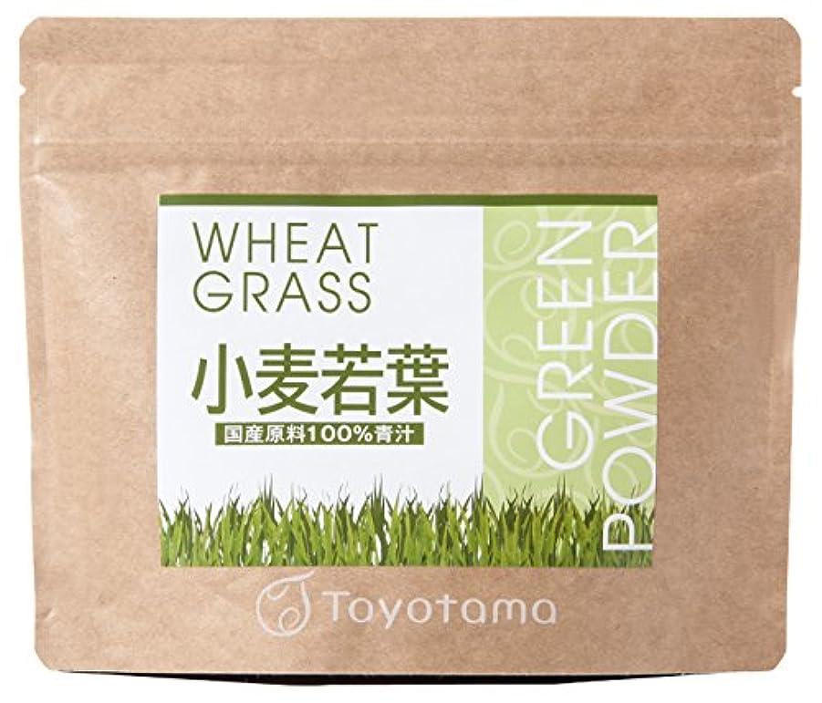 測る人質電子レンジトヨタマ(TOYOTAMA) 国産小麦若葉100%青汁 90g (約30回分) 無添加 ピュアパウダー 1096314