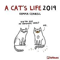 A Cat's life 2019 Broschuerenkalender