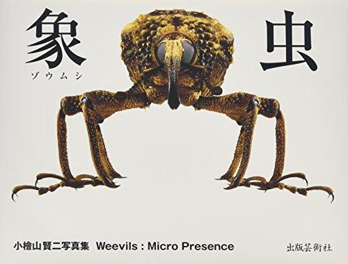 象虫:マイクロプレゼンス―小檜山賢二写真集の詳細を見る