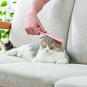 ねこじゃすり ピンク