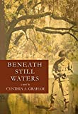 Beneath Still Waters (Hick Blackburn Book 1) (English Edition)