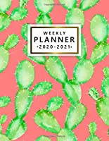 Weekly Planner 2020-2021: Cute Watercolor 2 Year Weekly & Daily View Organizer & Agenda with To-Do's, Funny Holidays & Inspirational Quotes, Vision Boards & Notes | Pretty Cactus & Succulents