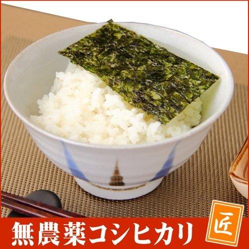 無農薬玄米 無農薬米 28年 福井県産 特別栽培米 無農薬 無化学肥料 コシヒカリ 匠 5kg