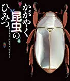かがやく昆虫のひみつ (ポプラサイエンスランド 6) 画像