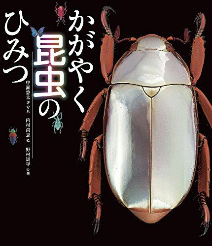 かがやく昆虫のひみつ (ポプラサイエンスランド 6)の詳細を見る
