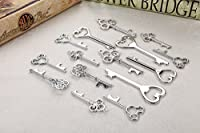 Assorted Skeleton Key Shaped Bottle Openers Wedding Favor Rustic Décor, 40 pieces (Mixed Silver) [並行輸入品]