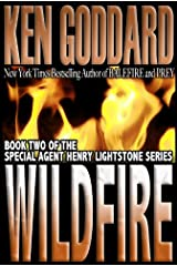 Wildfire (Special Agent Henry Lightstone Series Book 2) Kindle Edition